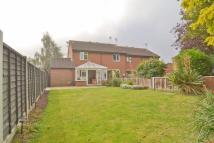 2 bed semi detached house in HOCKLEY