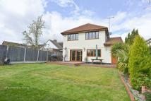 4 bedroom Detached property for sale in Ashingdon