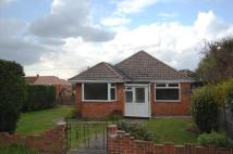 Detached Bungalow to rent in Charmwen Crescent...