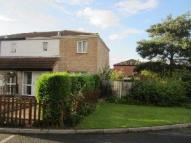 3 bedroom semi detached home in Acacia Drive, Leegomery...