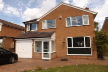 property to rent in Meadow View, Moseley...
