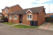 Bungalow to rent in Isbourne Way...