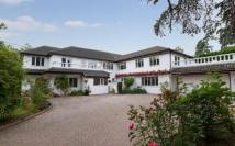 7 bed Detached property in St. Leonards Hill...