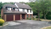 5 bed Detached property in Monks Wood Close...