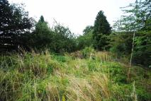 Land for sale in Horton