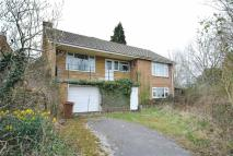 3 bed Detached Bungalow in Creaton