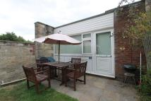 Bungalow to rent in Cockleton Lane, Gurnard...