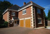 Detached house for sale in The Oaks, Norwich Road...