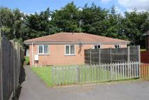 Detached property to rent in 9a Hazel Road...