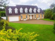 Detached property for sale in Ash Meadows, picktree...