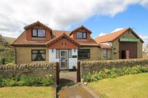 Detached home in Medomsley, Consett, DH8