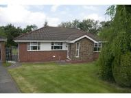 Bungalow in Briar Mews, Blackhill...