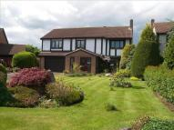 Detached property for sale in Ripon Close, Barns Park...