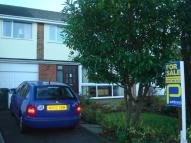 semi detached property in Ferndale, Belmont, DH1