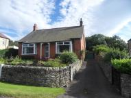 Bungalow to rent in Shilburn Road, Allendale...