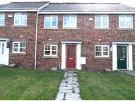 2 bedroom Terraced property for sale in Ormonde Street, Jarrow...