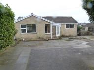 3 bedroom Bungalow in Horncliffe View...