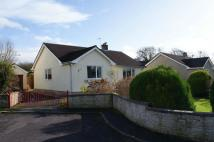Detached Bungalow in Springfield Drive...