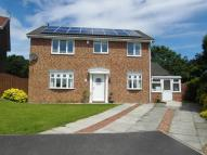 4 bedroom Detached property for sale in Willow Grove, Horden, SR8