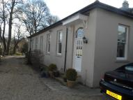 Detached property to rent in the Manor, Usworth Hall...