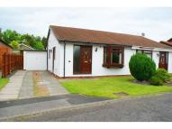 Bungalow for sale in Turnstone Drive, Ayton...
