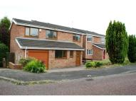 Detached home for sale in Kittiwake Drive, Ayton...