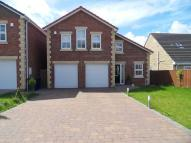 4 bedroom Detached house for sale in Northside, Birtley, DH3