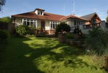 3 bedroom Bungalow in Oulder Mount, Bamford...