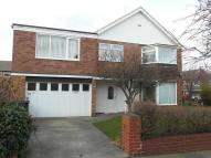 Hamilton Drive semi detached property to rent