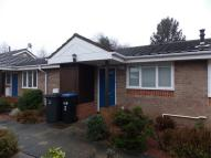 Bungalow to rent in Hylton Court, Newton Hall