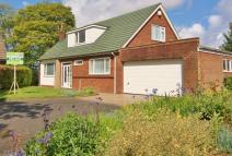 4 bedroom Detached home for sale in 4 Cooper Hill Close...