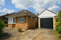 2 bedroom Detached Bungalow for sale in Broadlands, Hanworth...