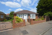 Detached Bungalow for sale in Broadlands, Hanworth...