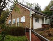 Bungalow to rent in Westfield Road, Rodmill