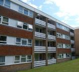Flat to rent in Lanark Court, Hamsey Way