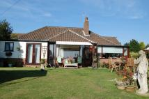 Detached Bungalow in Mill Loke, Horning