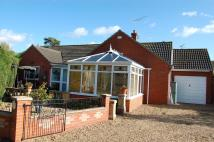 Detached Bungalow in Three Hammer Common...