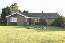 Detached Bungalow in Charles Close, Wroxham