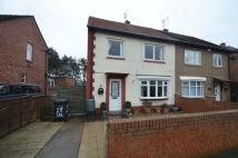 3 bed semi detached property for sale in Salcombe Avenue, Jarrow...
