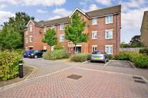 Flat to rent in Whyte Close, Whitfield...