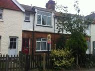 3 bed Terraced house in Alfred Road, Newtown...