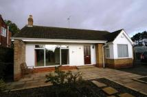 3 bed Bungalow to rent in Queensbury Way Swanland