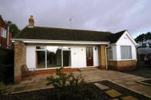 3 bed Detached Bungalow in Queensbury Way, Swanland...