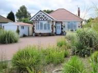 Main Road Detached Bungalow to rent