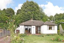 4 bed Bungalow in Haslemere, The Green...