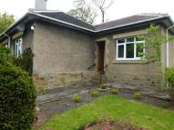 Scholes Lane Bungalow to rent