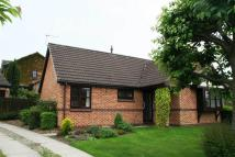 Detached Bungalow to rent in Lakeland Way, Walton, WF2