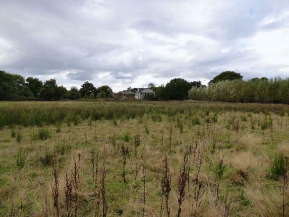 Adjacent Field