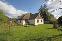 3 bedroom Detached Bungalow in Downside
