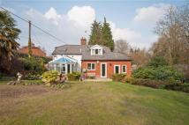 3 bed Detached home for sale in Maron Cottage, Downwell...